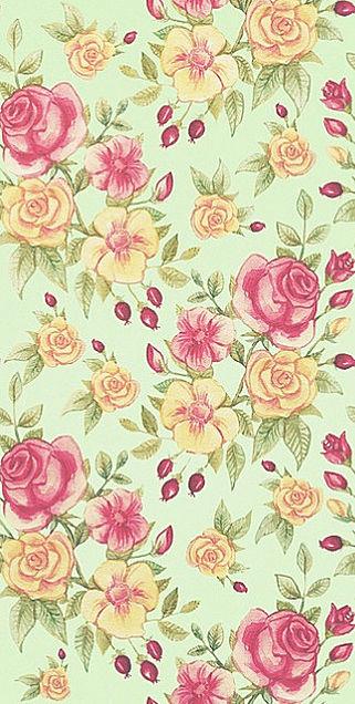 薔薇🌹  バラ  ローズ  パステルの画像 プリ画像