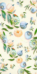 カボチャ  南瓜  パンプキンの画像(野菜に関連した画像)