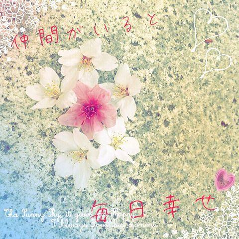 桜 ポエムの画像(プリ画像)