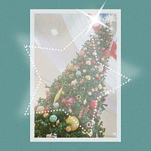 クリスマスツリー プリ画像