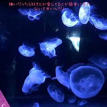 失恋💔辛い(´Д`)ハァ… プリ画像