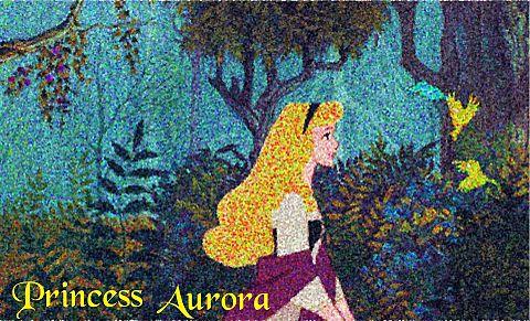オーロラ姫(ブライアローズ)の画像 プリ画像