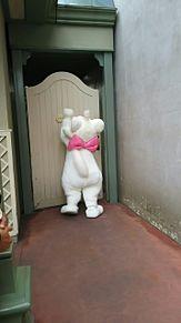 ドアどんどんマリーちゃんw プリ画像