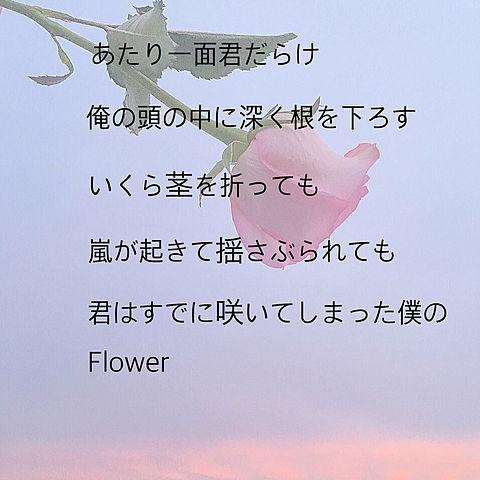 セブチ Flower 歌詞の画像(プリ画像)