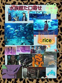 ナルト&コナン水族館にての画像(ナルトに関連した画像)