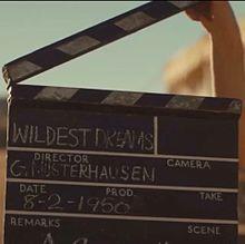Wildest Dreamsの画像(プリ画像)