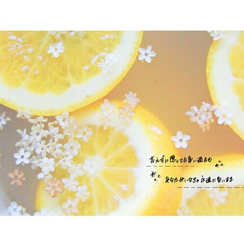 🍋 : Lemon の画像(プリ画像)