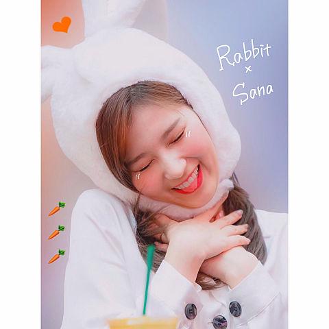 twice  Sana × Rabbitの画像(プリ画像)