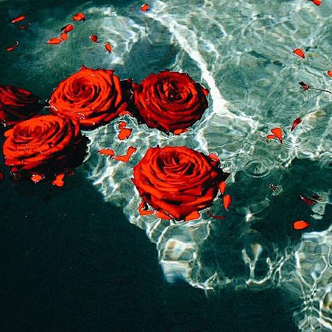 roseの画像 プリ画像