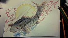 鯉鯉鯉鯉🐟の画像(プリ画像)