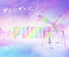 プーマの画像(プーマに関連した画像)