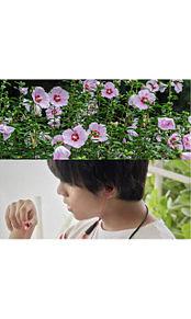 ジャニーズWEST 誕生花 壁紙の画像(誕生花に関連した画像)