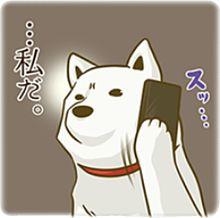 お父さん犬の画像17点完全無料画像検索のプリ画像bygmo