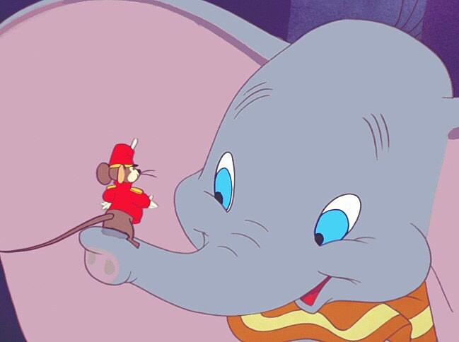 ダンボの鼻のの上にのっているティモシーです