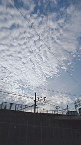 うろこ雲の画像(雲に関連した画像)
