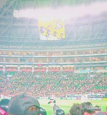 野球場✧︎の画像(ヤフオクドームに関連した画像)