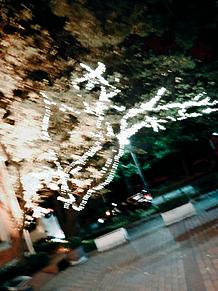 元町中華街の画像(元町に関連した画像)