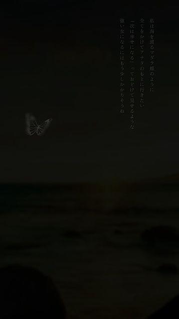 マダラ蝶の画像(プリ画像)