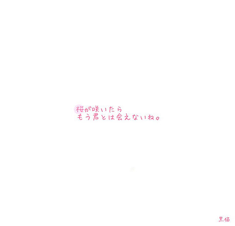 桜。卒業の画像 プリ画像