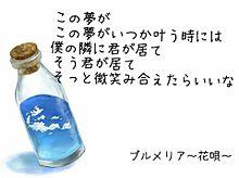 プルメリア~花唄~の画像(プリ画像)