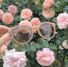 Flowerの画像(ガーリーに関連した画像)