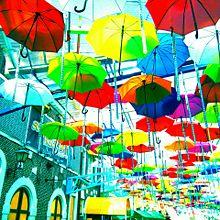ハウステンボスにての画像(傘に関連した画像)