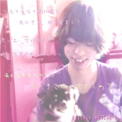 バンド大好きさん リク 桜花爛漫の画像(プリ画像)