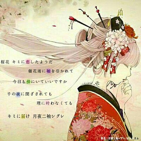 桜花二月ト袖シグレの画像(プリ画像)