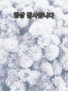韓国 プリ画像