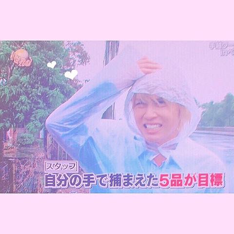 ♡ 手越イッテQ ♡の画像(プリ画像)