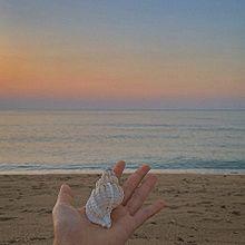 🌅 📸. 海 か ら の 景 色,🦪 プリ画像