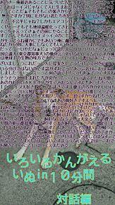 暇な犬の画像(おもしろ 待ち受けに関連した画像)