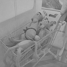 👮🏻♀️の画像(人形に関連した画像)