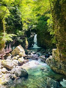 滝とカエルの画像(エルに関連した画像)
