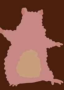 坊ネズミ可愛い😘の画像(千尋に関連した画像)