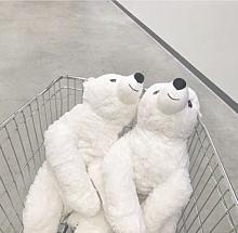 白くま、オシャレ、❤️の画像(IKEAに関連した画像)