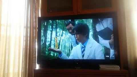亀ちゃんコマーシャルの画像 プリ画像