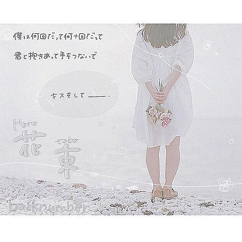 花束 .の画像(プリ画像)