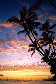 保存はいいね!の画像(ハワイに関連した画像)