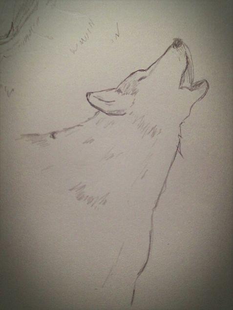 狼の画像(プリ画像)