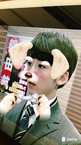 貝原茂平 犬の画像(プリ画像)