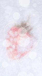 いちご壁紙の画像(果物に関連した画像)