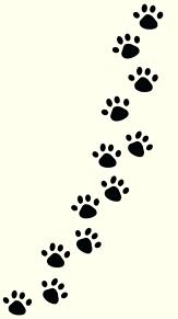 壁紙の画像(犬 おしゃれに関連した画像)