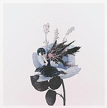 東京喰種の画像(喰種に関連した画像)
