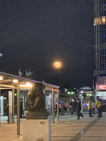 月が綺麗ですね〜〜の画像(月が綺麗ですねに関連した画像)