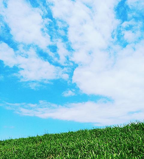 青空と草っぱらの画像 プリ画像