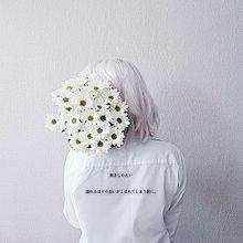 抱きしめたいの画像(シンプル/可愛い/かわいいに関連した画像)
