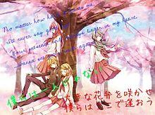 桜ノ雨 歌詞画 プリ画像