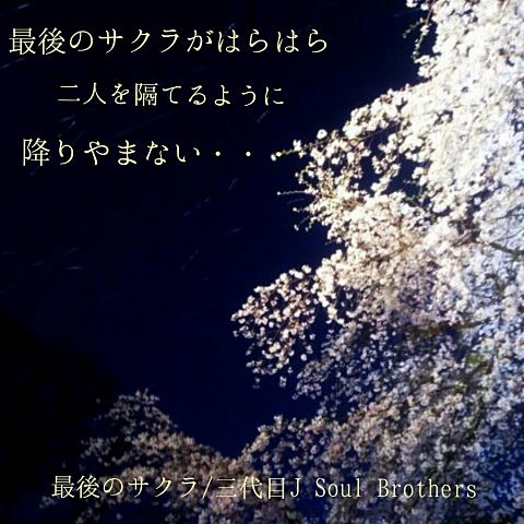 夜桜×三代目の画像(プリ画像)