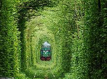 恋のトンネルークレーヴェン(Klevan)の画像(ウクライナに関連した画像)